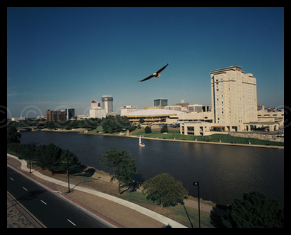 Eagle over Wichita